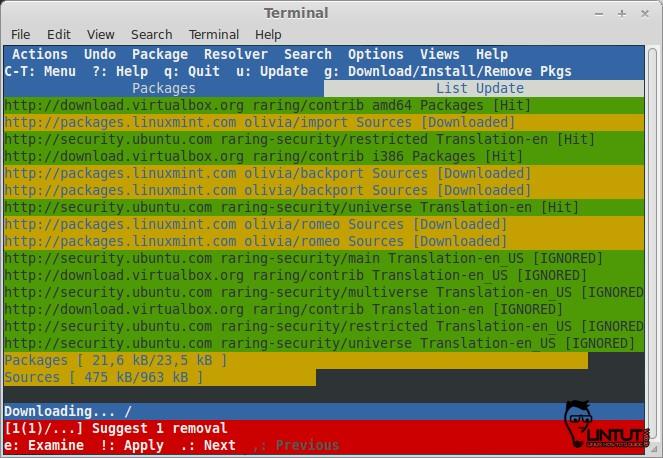 Aptitude GUI mode update package
