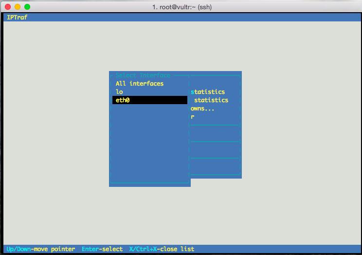 iptraf Select interface