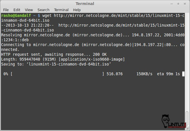 How to use wget command