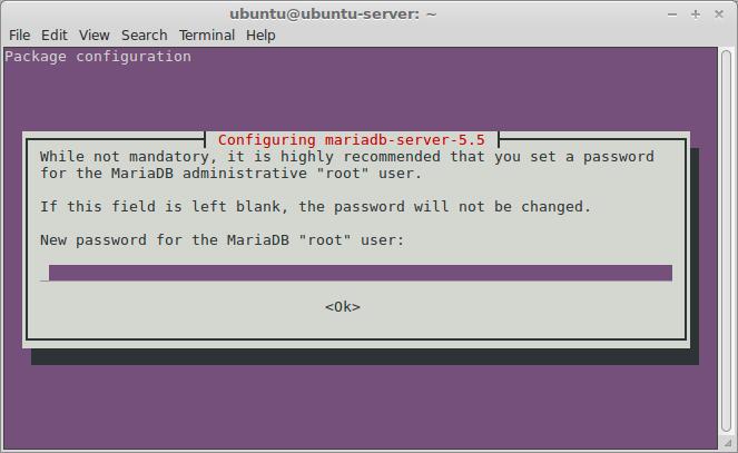 Set MariaDB root password
