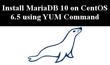 Photo of Install MariaDB 10.0 on CentOS linux using YUM command