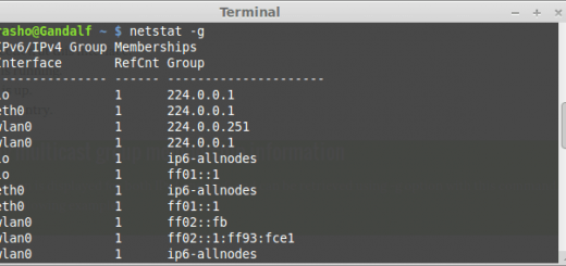 netstat command example output