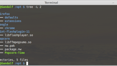 tree command example usage