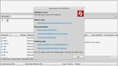 Photo of Install FileZilla on popular linux distribution