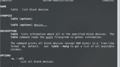 Photo of lsblk command – list block device information