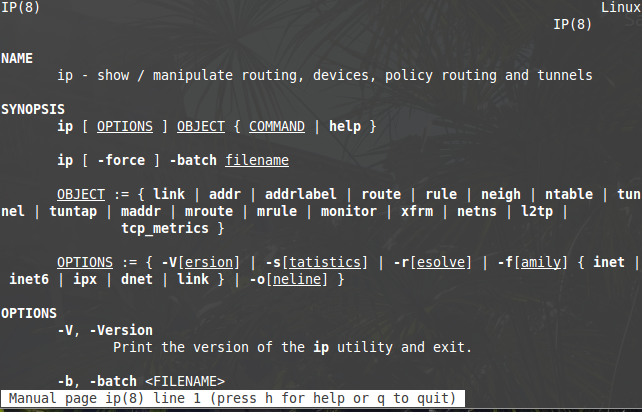 How to use Linux IP Command