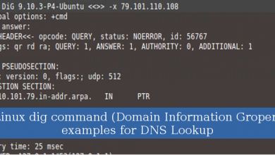 Photo of Linux dig command (Domain Information Groper) examples for DNS Lookup