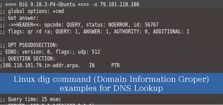 Linux dig command (Domain Information Groper) examples for