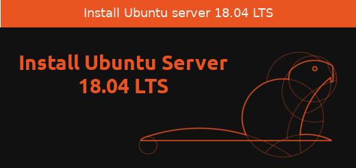 Install Ubuntu 18 04 LTS Server | LinTut