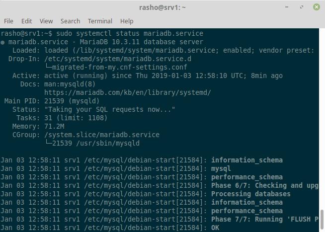 Status MariaDB service