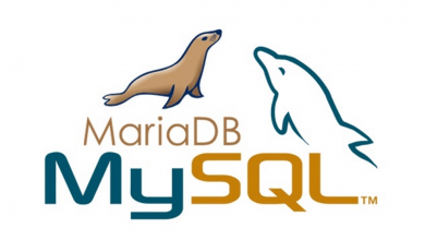 Photo of How To Reset MySQL Or MariaDB Root Password