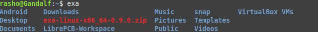 Exa example output