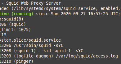 Photo of How to Install and Configure Squid Proxy Server on Ubuntu 20.04