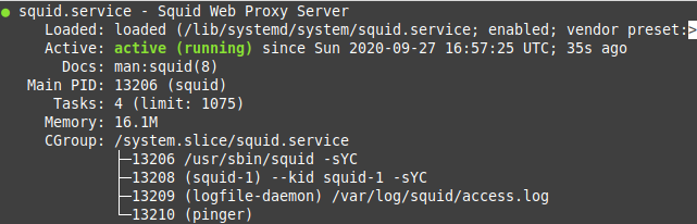 Show status squid proxy server
