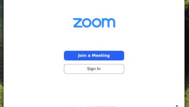 Zoom client
